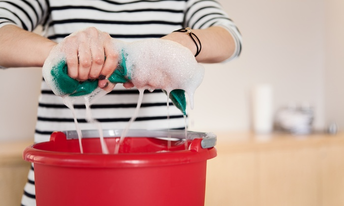 Services By Cecelia - Fort Myers / Cape Coral: Three Hours of Cleaning Services from Services by Cecelia