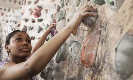All-Day Rock Climbing Package or Intro to Climbing Package at Climb Upstate (Up to 62% Off)