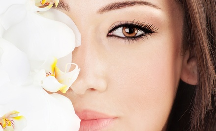 $199 for Permanent Makeup for Upper and Lower Eyeliner or Eyebrows at Alchemy Wellness Studio ($425 Value)