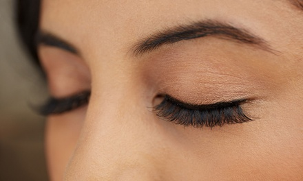 Brow and Lash Package: 1 $19, 2 $35 or 3 Visits $49 at Tranquility Hair And Beauty On Queen Up to $144 Value