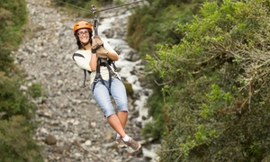 Broadmoor Soaring Adventure : Guided Zipline Tour for One or Two at Broadmoor Soaring Adventure (49% Off)