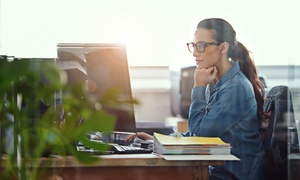 Blue Mountain Training Solutions: Level Three Executive Personal Assistant Online Course from Blue Mountain (89% Off)