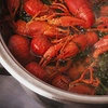 Up to 45% Off to East End Crawfish Festival