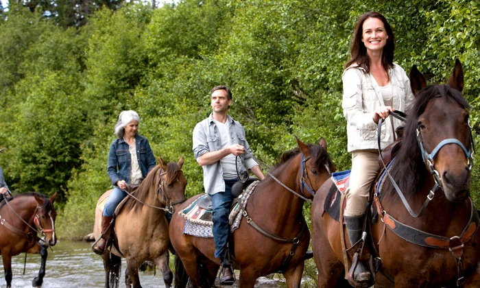 Wild Rose Equine Center - Green: 60-Minute Guided Horseback Trail Ride for One or Four at Wild Rose Equine Center (50% Off)