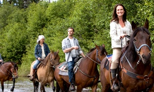 MD Ranch: One-Hour Horseback Ride for Two or Four