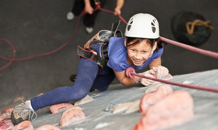 $169 for One Week of Rock Climbing Day Camp for Kids at Bridges Rock Gym ($325 Value)
