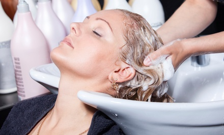 Shampoo and Blow Dry Packages at Ecstasy Spa and Salon (Up to 64% Off). Three Options Available.