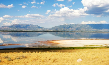 Groupon Deal: 1- or 2-Night Stay for Two in an RV Site or Cabin at Pony Express RV Resort in North Sale Lake, UT