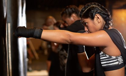image for Three or Five Kickboxing Classes at Bowie Mixed Martial Arts (Up to 79% Off)