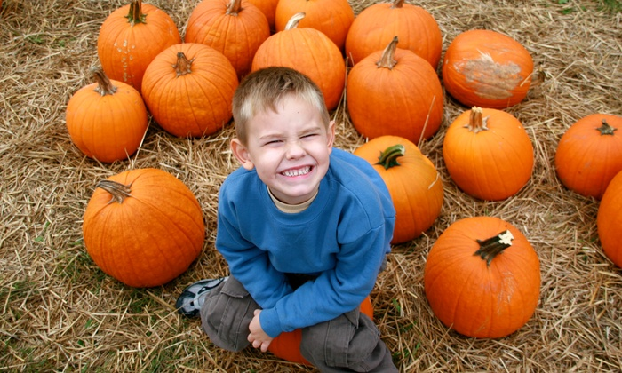 Pumpkin Patch - Clay Meadows: Admission and 11 or 23 Activity Tickets at Pumpkin Patch (Up to 51% Off)