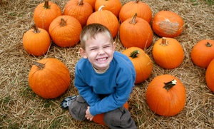 Pumpkin Patch: Admission and 11 or 23 Activity Tickets at Pumpkin Patch (Up to 51% Off)