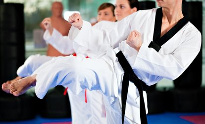 Two or Ten Taekwondo Classes at Verve Martial Arts (Up to 69% Off)