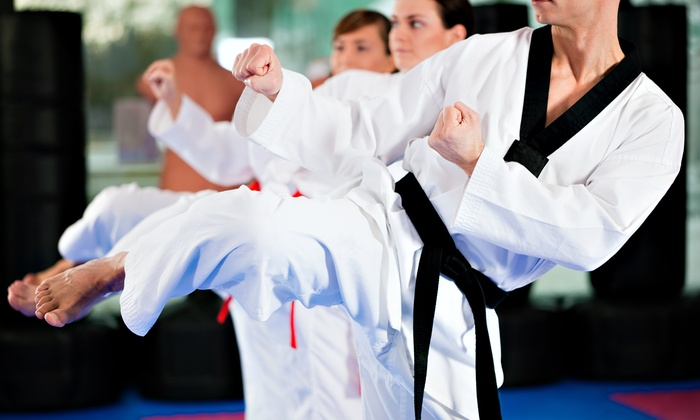 Evolution Martial Arts & Fitness - Evolution Martial Arts & Fitness: $45 for One Month of Tae Kwon Do and a T-Shirt at Evolution Martial Arts & Fitness ($154 Value)