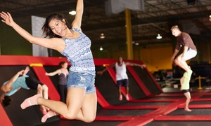 Trampoline Park Packages At The Wairhouse Trampoline Park (up To 56% Off). Four Options Available.