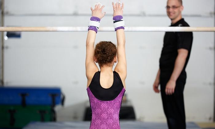 Minnesota Valley Gymnastics Center - Savage: Eight-Week Gymnastics Session or Five Open-Gym Sessions at Minnesota Valley Gymnastics Center (Up to 56% Off)