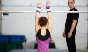 Minnesota Valley Gymnastics Center: Eight-Week Gymnastics Session or Five Open-Gym Sessions at Minnesota Valley Gymnastics Center (Up to 65% Off)