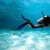 Bautismo de buceo en mar por 29,95 €