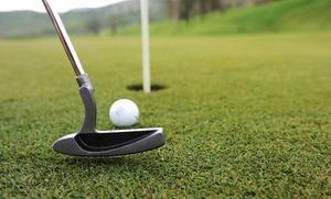 Pitch Putt Teia: 6 horas de bolas ilimitadas de golf para uno por 9,95 € o green fee de 18 hoyos para dos o cuatro desde 16,95 €