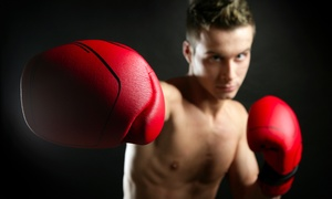 Champs Boxing Club: Boxing-Class Packages at Champs Boxing Club (Up to 61% Off). Three Options Available.