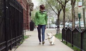 Napa Paw Spa: Three 60-Minute Group Dog Walks or 30-Minute Private Dog Walks from Napa Paw Spa (50% Off)