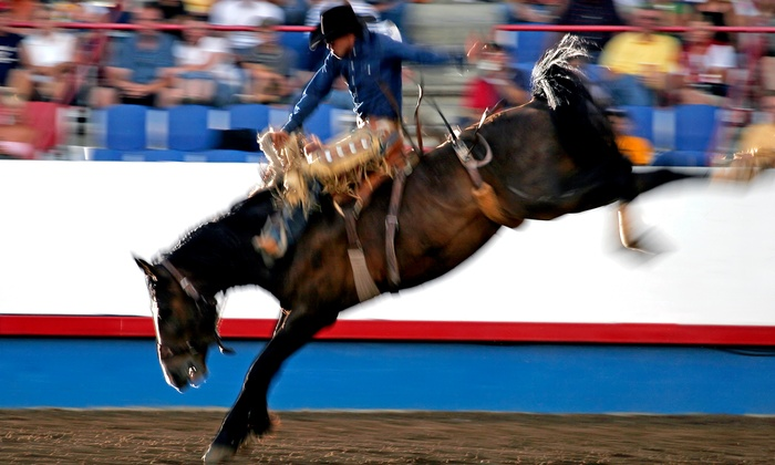 Rodeo - Miller Farms: $15 to See the Rodeo at Miller Farms on Saturday, May 9, or Sunday, May 10 ($30 Value)