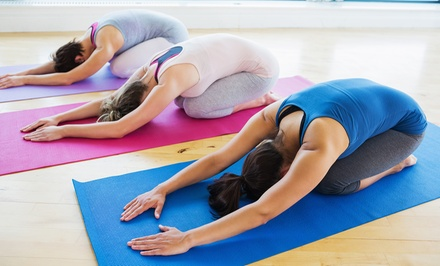 5 or 10 Bikram Hot-Yoga Classes or One Month of Unlimited Classes at Bikram Hot Yoga of Virginia (Up to 60% Off)