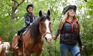 Windrift Adventures: Trail-Riding Experience for One, Two, or Four Horseback Riders at Windrift Adventures (Up to 47% Off)