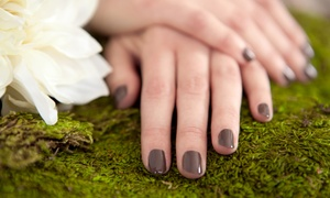 Chic Nails: One or Two Spa Mani-Pedis with Paraffin Hand Treatments at Chic Nails (Up to 53% Off)