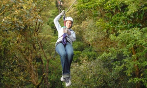 Don Strange of Texas: Zipline Ride, Tower Climb, and Lunch for One or Two at Don Strange of Texas (Up to 48% Off)