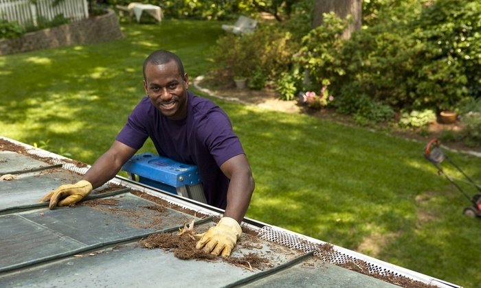 Harrison Total Home Care - Charleston: Gutter Cleaning for a One-, Two-, or Three-Story Home at Harrison Total Home Care (Up to 64% Off)