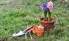 58% Off Gardening Supplies
