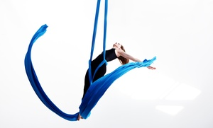 Peak Wellness and Nutrition: Four or Eight Aerial Yoga Classes at Peak Wellness and Nutrition (Up to 46% Off)