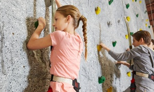 Climb Upstate: Rock-Climbing Package for 2 or 4 or Intro Class for 2 at Climb Upstate (Up to 55% Off)