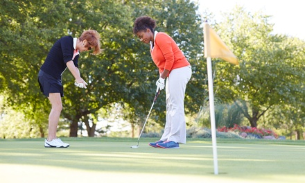 Golf Lessons at Funland Golf (Up to 52% Off). Five Options Available.