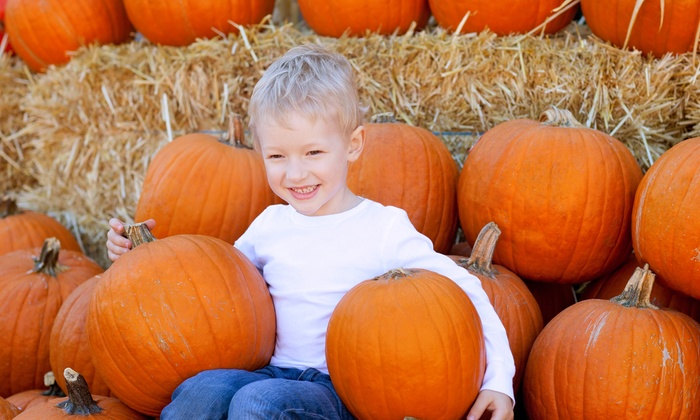 Settler's Pond Pumpkin Patch - Settlers Pond Hooved Animal Shelter & Rescue: Autumn Farm Activities for 2 Adults, 1 Child, or Family of 4 at Settlers Pond Pumpkin Patch (Up to 58% Off)