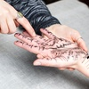 Up to 55% Off Palm-Reading Sessions