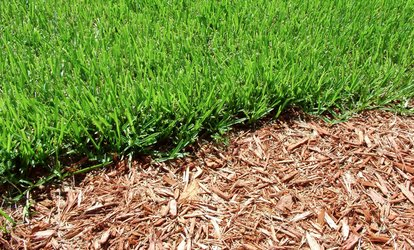 Grass or Sod Installation or Mulch Delivery and Spread from InvoGreen (Up to 63% Off)
