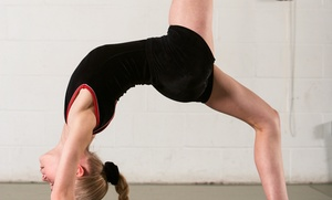 Elite Gymnastics West: One Month of Gymnastics Classes at Elite Gymnastics West (56% Off). Four Options Available.