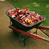 Up to 53% Off Winter Prep Landscaping