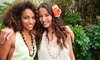 Cliché Beauty Lounge - Northwest Columbia: Hair Care Packages at Cliché Beauty Lounge (Up to 59% Off). Three Options Available.