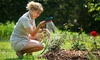 Sal's Heating & Cooling, Inc: $85 for One Outdoor Hose Faucet Replacement from Sal's Heating & Cooling, Inc ($179 Value)