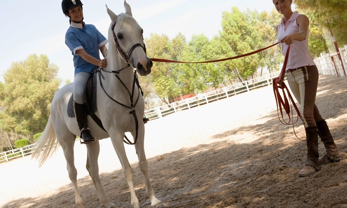 Fox Horsemanship - Fox Horsemanship: Horseback Riding Lessons at Fox Horsemanship (Up to 50% Off). Three Options Available.
