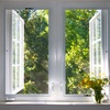 Home or Window Cleaning from HousekeePink Services