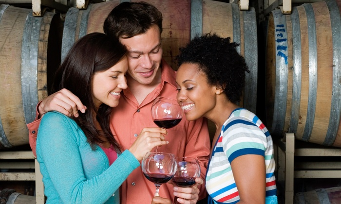 Texas Winos - Dallas: Full-Day Winery Bus Tour with Meal and Souvenirs for One, Two, or Four from Texas Winos (Up to 64% Off)