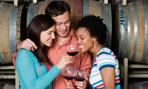 Texas Winos: Full-Day Winery Bus Tour with Meal and Souvenirs for One, Two, or Four from Texas Winos (Up to 60% Off)