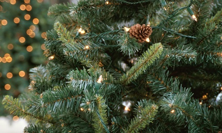 One 6–7 foot or 7–8 foot Noble Fir Christmas Tree or a 26
