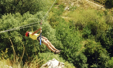 Zipline Experience for Two or Four and Photos on a Memory Card at Hi-Liner Dual Racing Zip Lines (Up to 55% Off)