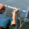Up to Half Off Exterior Home Cleaning