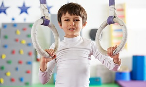 GymTek Academy: One or Two Months of Gymnastics Classes or 10 Ninja Obstacle-Course Classes at GymTek Academy (Up to 54% Off)