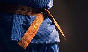 Marshall's MMA/jiu-jitsu: Two Weeks, One Month, or Three Months of MMA and Jiu-Jitsu Training at Marshall's MMA (Up to 74% Off)